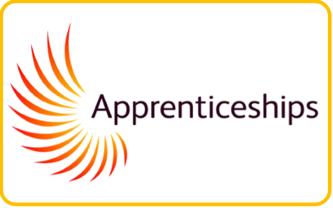 https://www.gov.uk/topic/further-education-skills/apprenticeships
